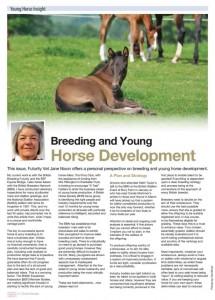british-breeder-young-horse-development